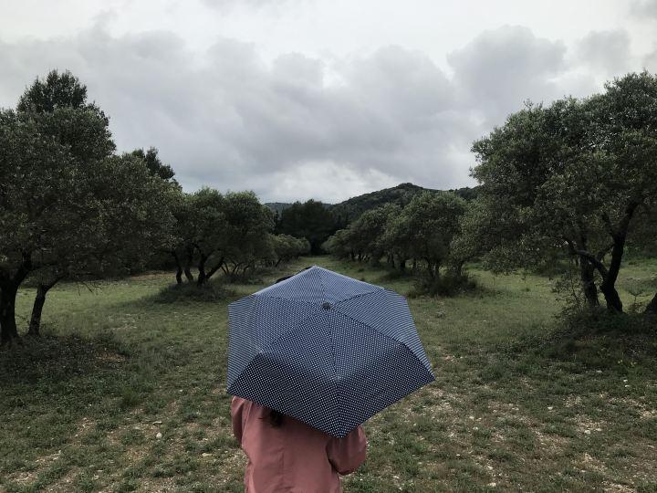 La Provence sous laPluie